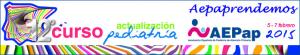banner_12cursoaepap